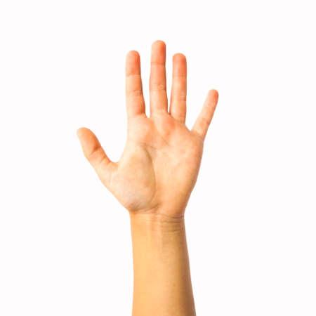 Offene Hand und fünf Finger isoliert om weiß