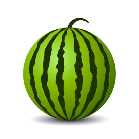 Round watermelon vector icon