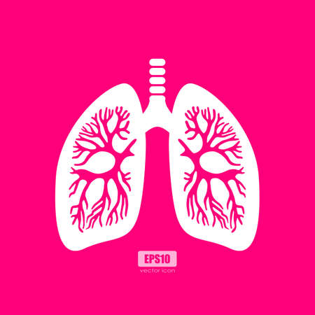 Lungs anatomy vector poster