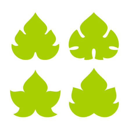 Green  leaves   icon set Vector illustration.