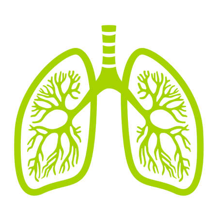 Green lungs vector icon Illustration