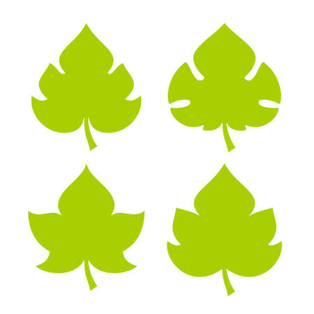Green fresh leaf vector icon