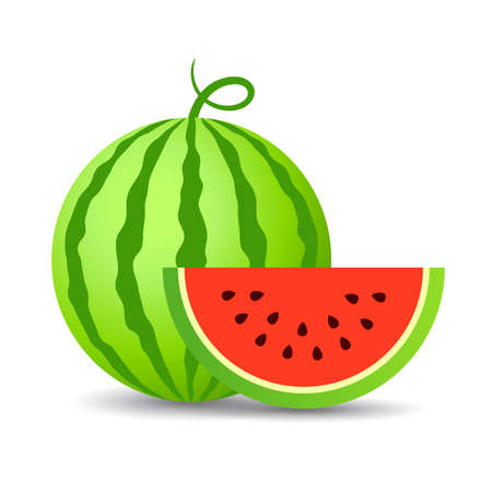 Watermelon vector cartoon icon