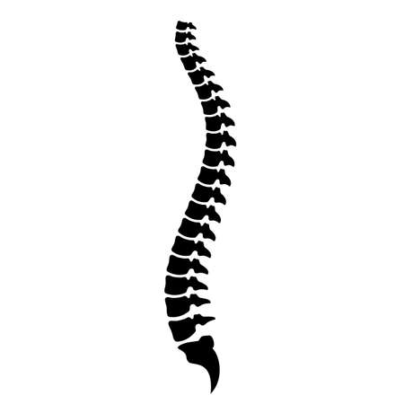 Spinal cord vector icon