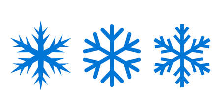 Snowflake silhouette vector icon