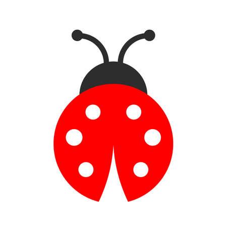 Icona di vettore di coccinella