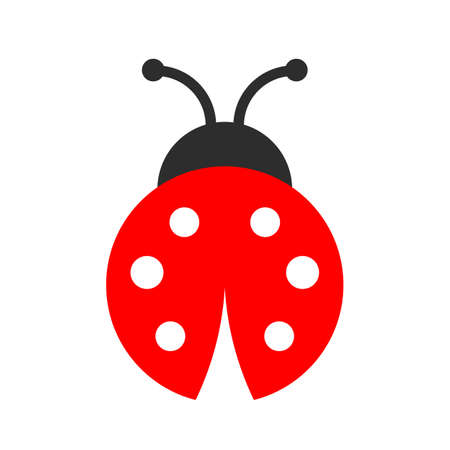 Icono de vector de Lady bug