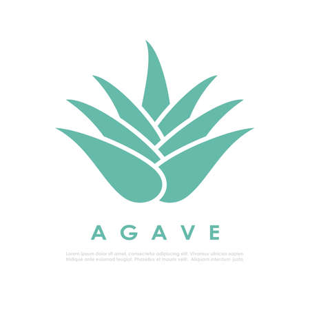 Agave cactus icon