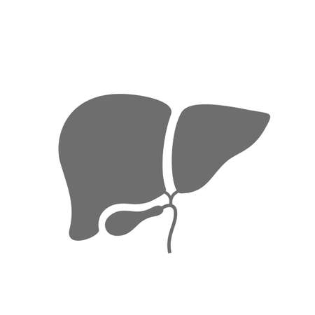Liver vector icon isolated on white background