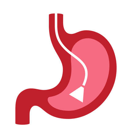 Endoscopy vector icon isolated on white background