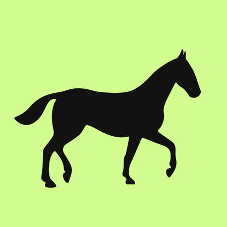 Walking horse vector icon isolated on green background Illustration