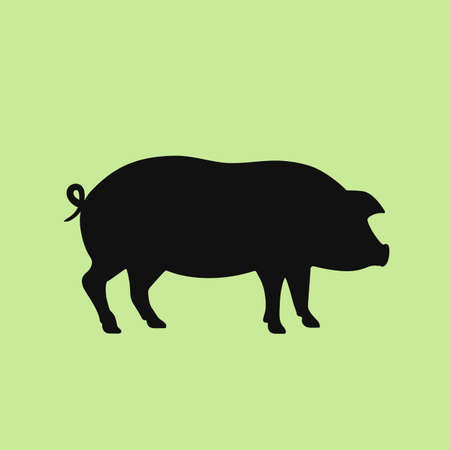 Piglet vector icon on green background