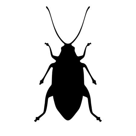 Black cockroach silhouette vector icon on white background
