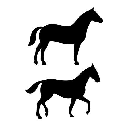Standing and walking horse silhouette icon on white background Ilustracja