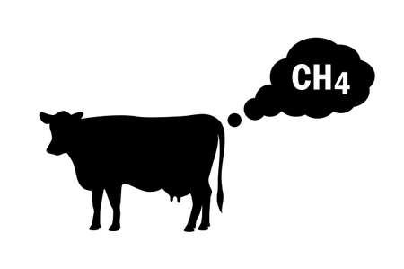 Methane emissions from livestock concept icon on white background