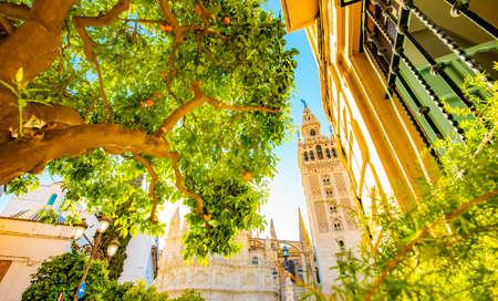 Seville city in summer, sunny Spain photo Stock Photo
