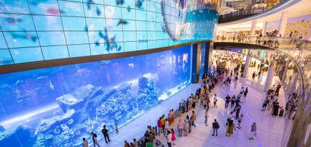 Dubai, UAE - March 3, 2020: Underwater aquarium located in Dubai mall 스톡 콘텐츠