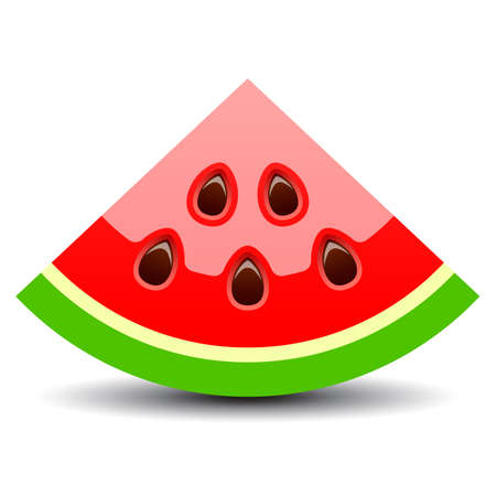 Watermelon piece vector icon on white background