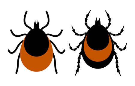 Chigger and tick vector icon isolated on white