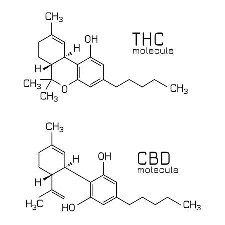 THC vs CBD molecule formulas isolated on white background