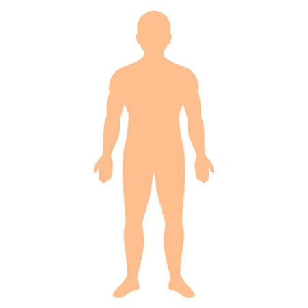 Human body vector silhouette isolated on white background