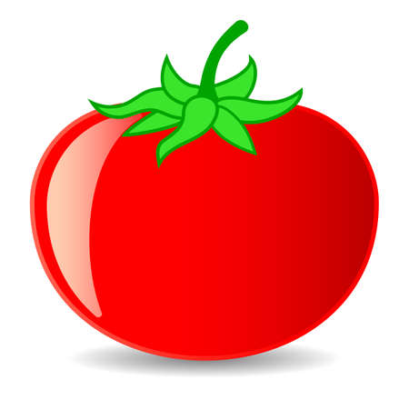 Tomato vector cartoon isolated on white background