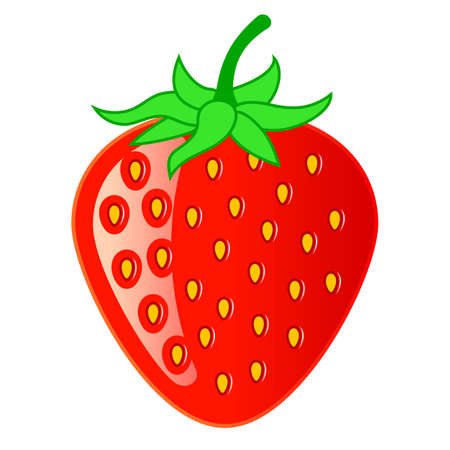 Strawberry vector cartoon isolated on white background 일러스트