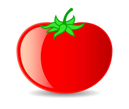 Big red tomato, vector cartoon isolated over white background 일러스트