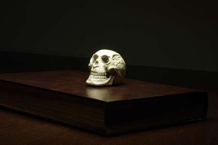 transience: skull book Stock Photo