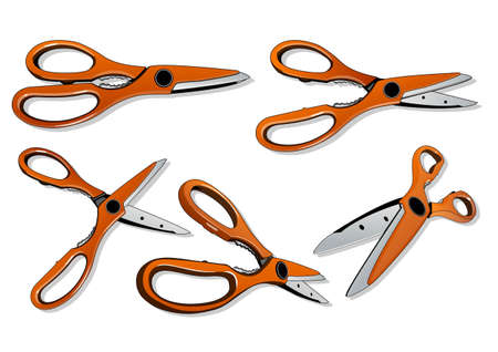 all of shears Stock Vector - 21509760
