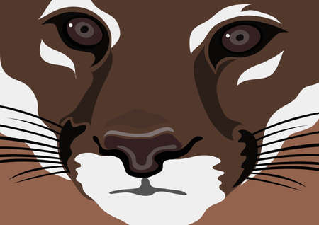 tiger faces Vector