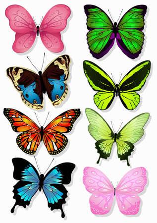 mariposas amarillas: volando con un hermoso 2