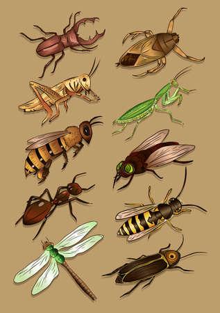 ant leaf: Hermoso de insectos Vectores