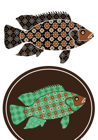 spawning: gorgeous patterned fish