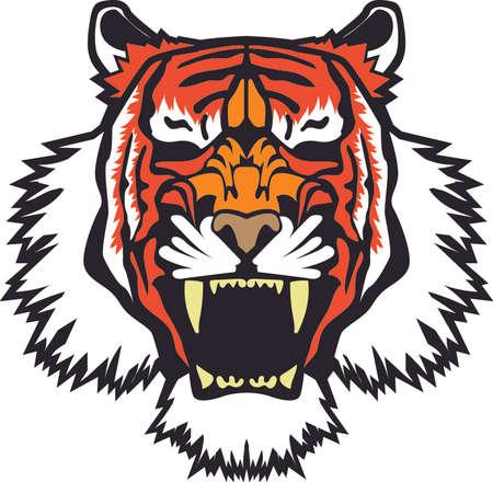 version: Tiger Vector - Color Version