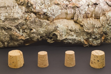 Different cork caps with Cork Oak tree bark on the background