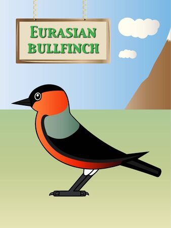 eurasian: Eurasian bullfinch illustration Natural background on Illustration