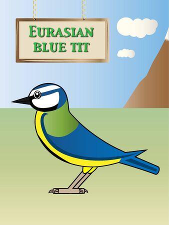 european alps: Natural Blue Tit illustration on background
