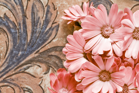 Group of pink flowers on old tiles background Archivio Fotografico