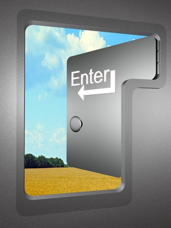 allegory: Allegory - the door shaped as computer key.