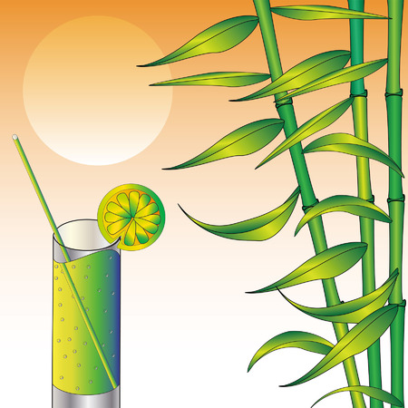 bleb: Sunset, bamboo and glass, vector illustration.