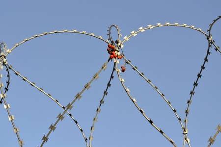penitentiary: Barbed wire on the sky background. Stock Photo