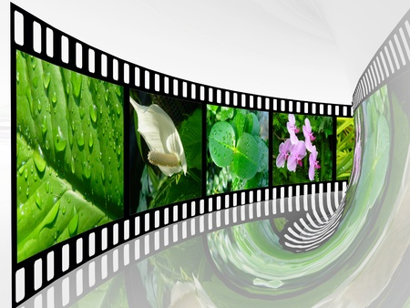 Film roll with color pictures (nature) in the tunnel. Stock Photo - 12603009