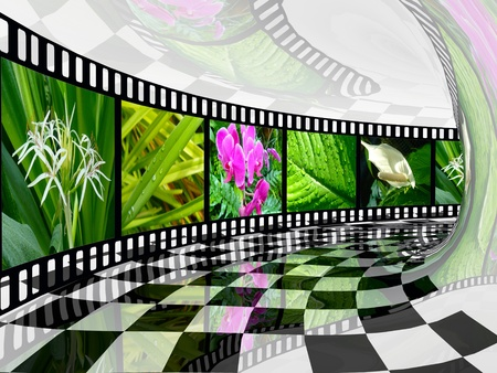 Film roll with color pictures (nature) in the tunnel. photo