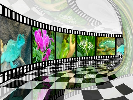 Film roll with color pictures (nature) in checked tunnel. photo
