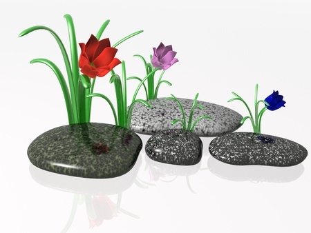 lilia: Spa stones with grass and flowers on white reflective background.
