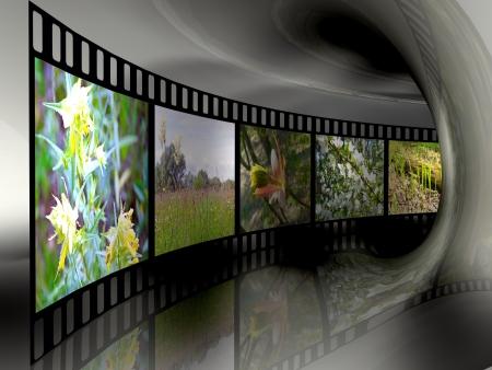 Rollo de película con el color de las imágenes (la naturaleza) en el túnel. Foto de archivo - 14698120