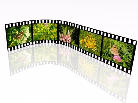 Film roll with color pictures (nature) on white background. photo