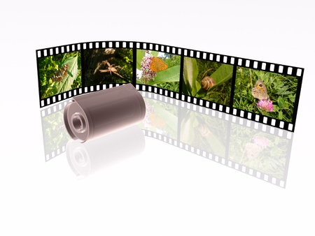 Film roll with color pictures (nature) and cassette on white background. photo