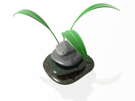 lilia: Piedras de Spa con c�sped sobre fondo negro de reflexivo.